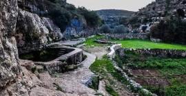 Husan to Battir Hike - Team Palestine...